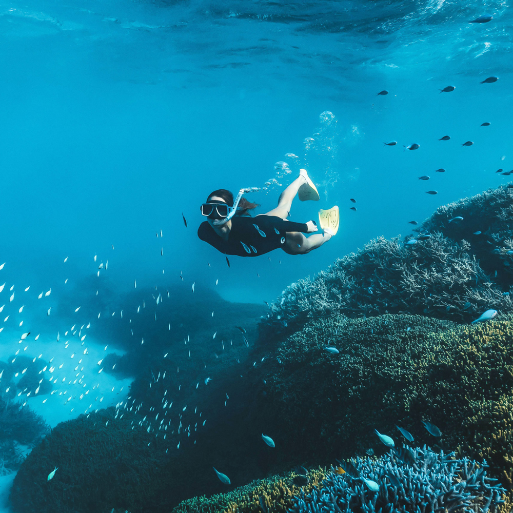 Great Barrier Reef Day Tour ex Brisbane & GC - Single Supplement